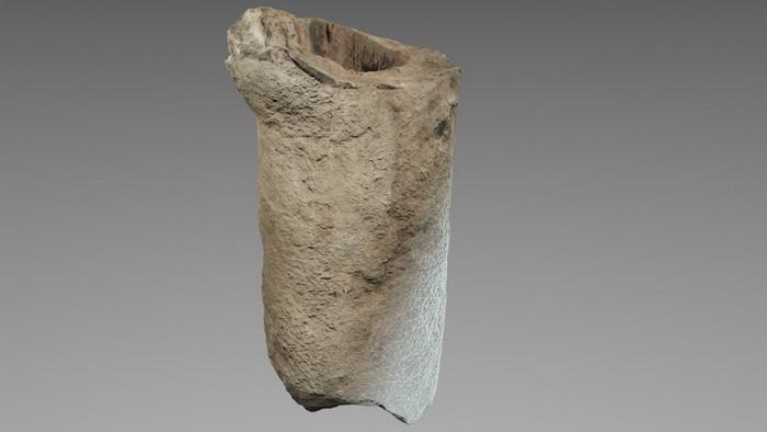 Digitalizado 3d de un hueso fosilizado